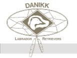 Danikk Labradors Home Page